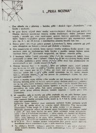 pilka_nozna_i_wyscigi_konne_2