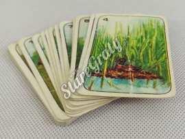 karty-do-gry-zwierzeta-1