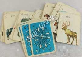 karty-do-gry-zwierzeta-3