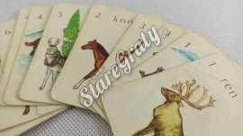karty-do-gry-zwierzeta-5